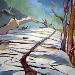 Snow-Path-e1415902628259.jpg