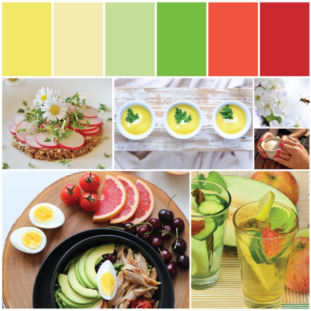 Food Blog Brand Identity