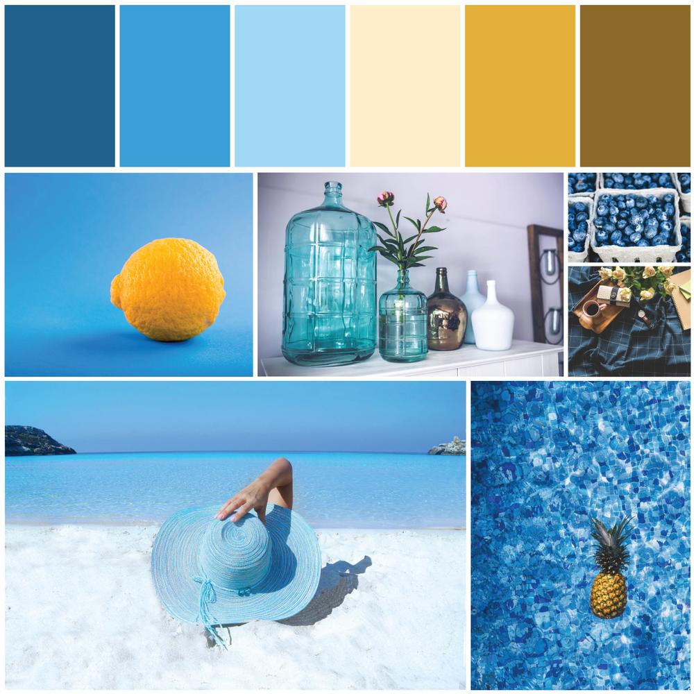 Lemon Blue Brand Identity