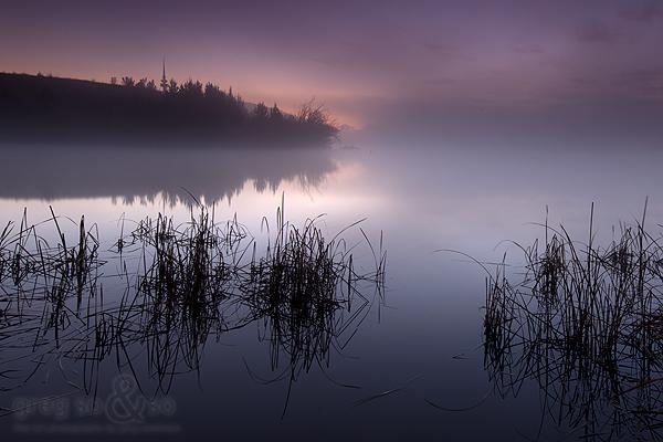 Scrivener dam with mist
