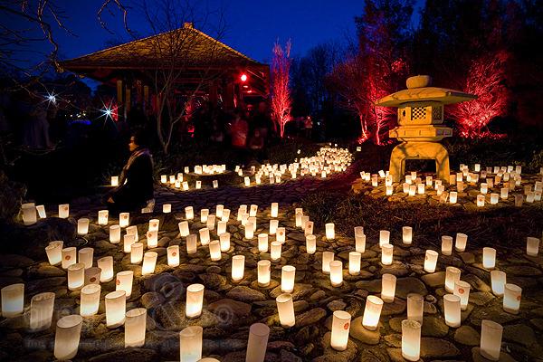 2010 Nara Lantern Festival Canberra