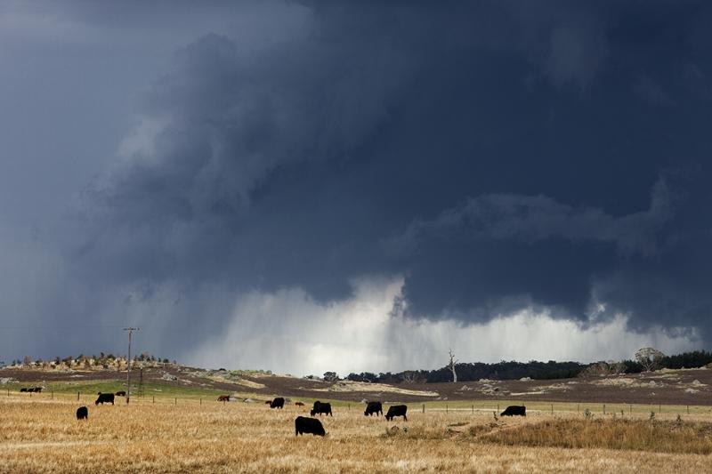 Ground hugging storm, Braidwood