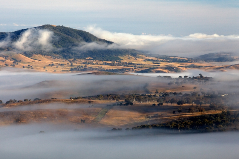 MOLONGLO VALLEY FOG.jpg