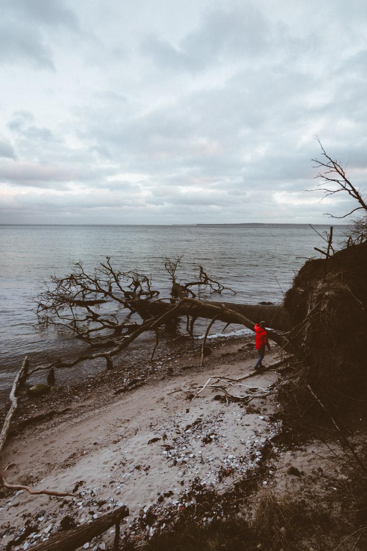 Vejle Fjord, Denmark 2017
