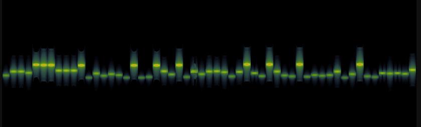 SQRC Spectrogram.jpg