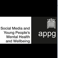 APPG social media.png