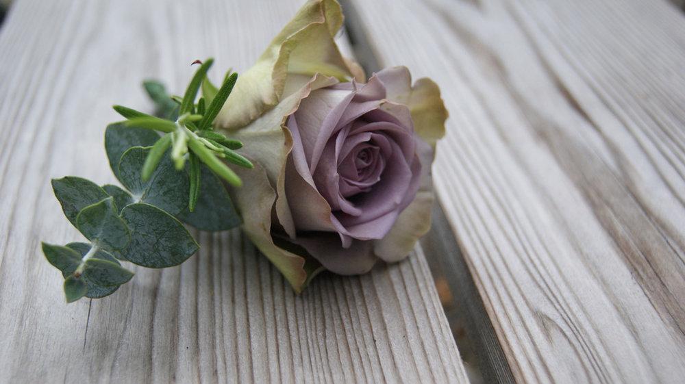 flower 9.JPG**.JPG