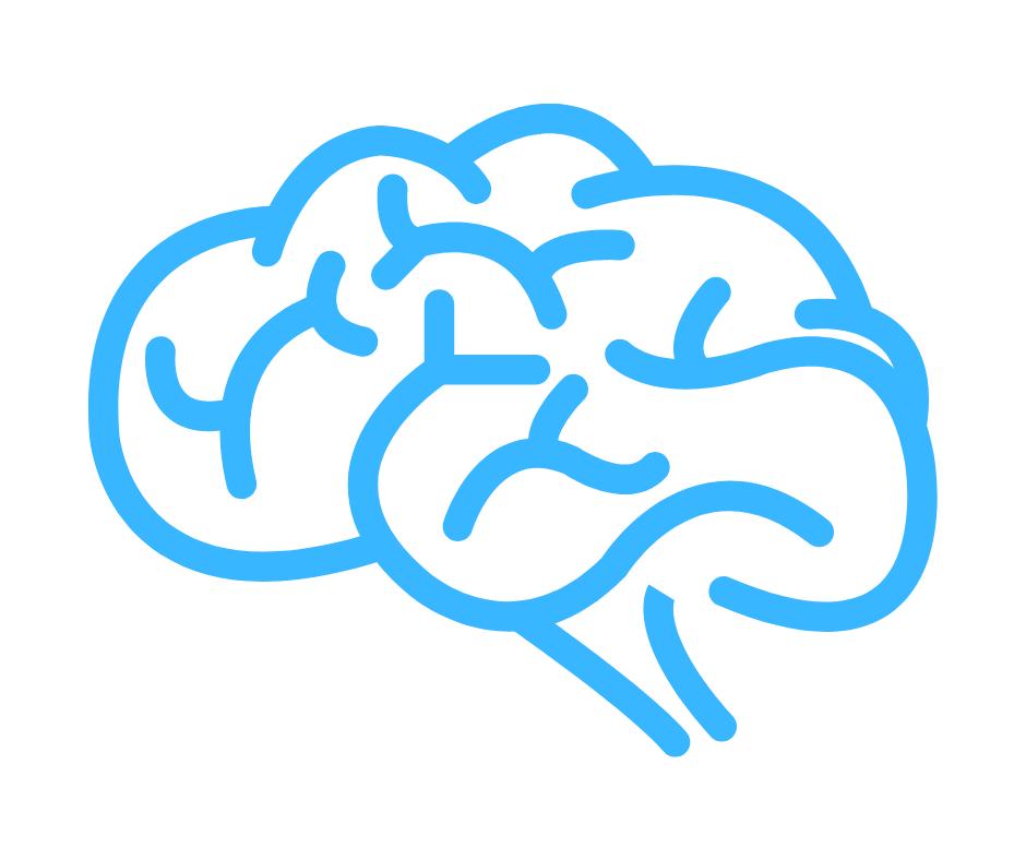 brain image homepage.png