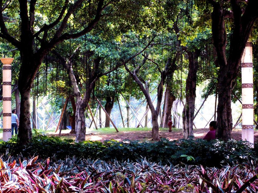 Gardens in Kunming
