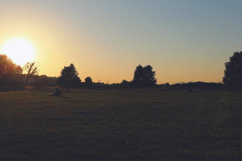 marsh sunset.jpg