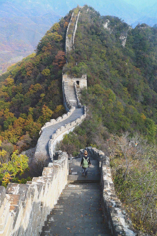 Wilderness surrounding the wall