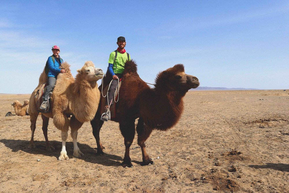 Riding camels in the Gobi desert