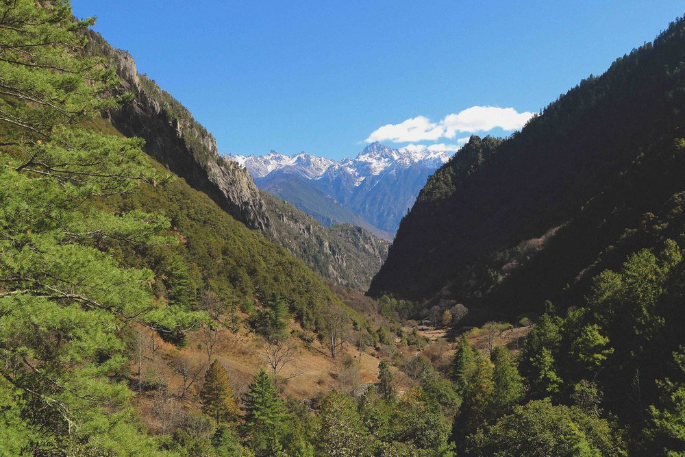 A view on the way up to Yubeng