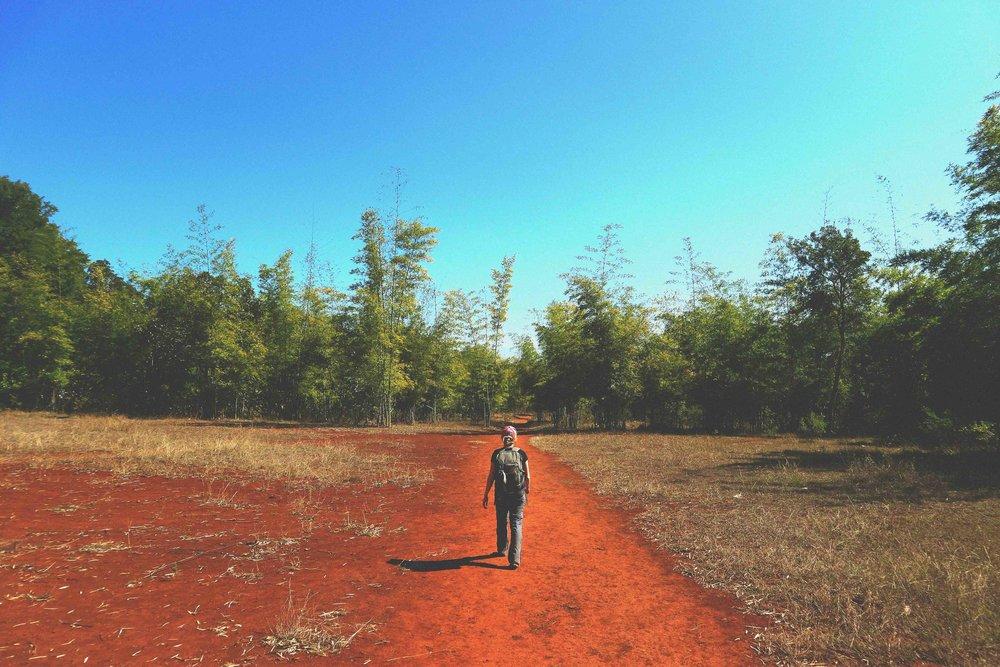 Kalaw Day Walks -
