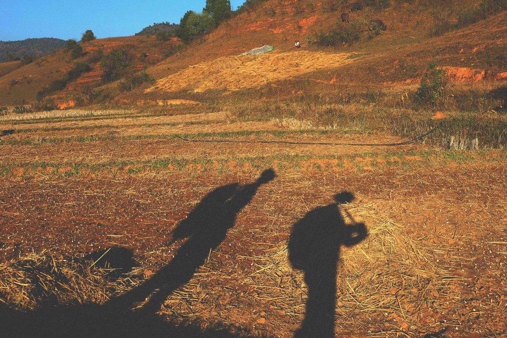 Self-Guided Walks -
