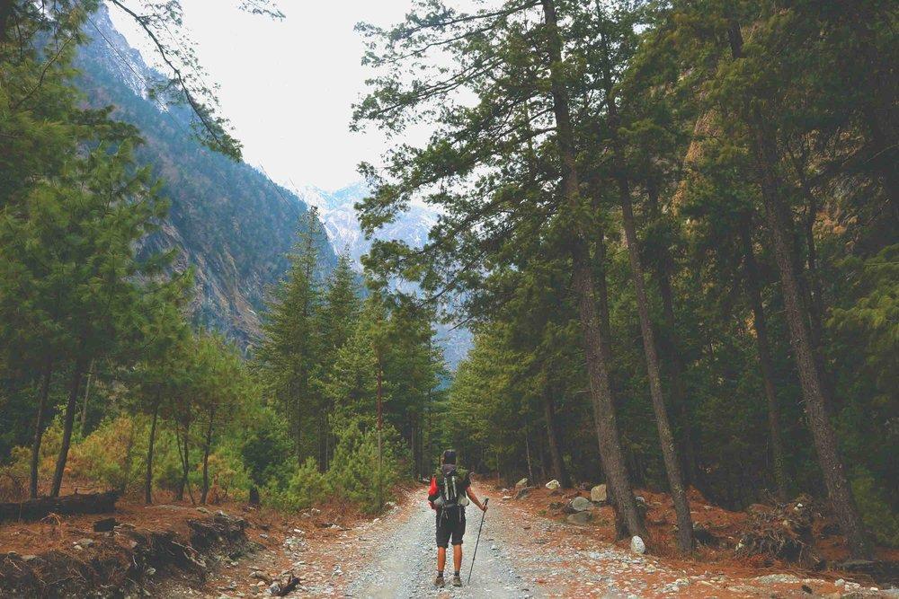 Nepal 33 Annapurna.jpg
