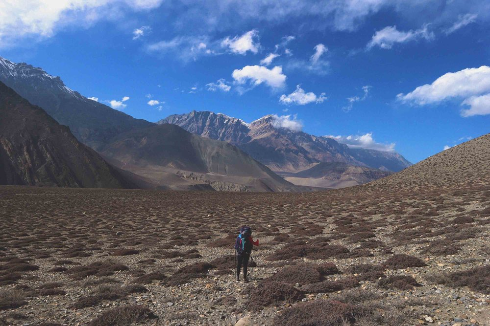 Nepal 77 annapurna.jpg