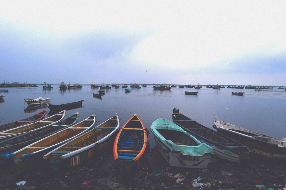 Getting off the beaten track in Jaffna's fishing village