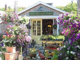 Five Islands Farm    Local & Fresh