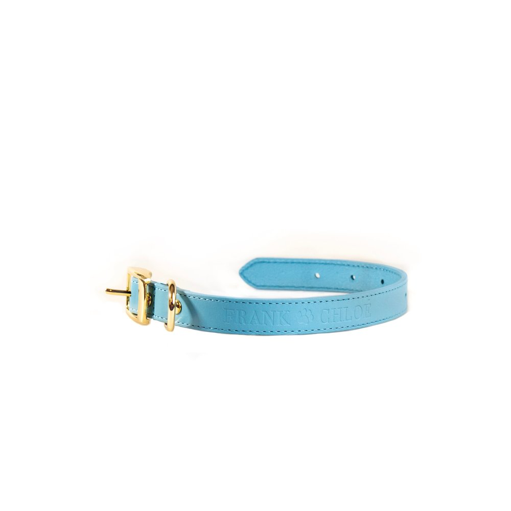 blå halsband bra.jpg