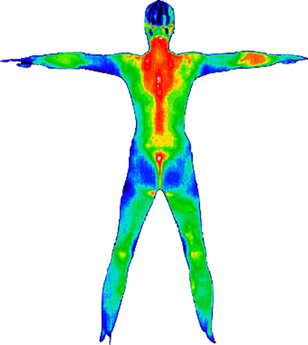 Thermography-Full-Body.jpg