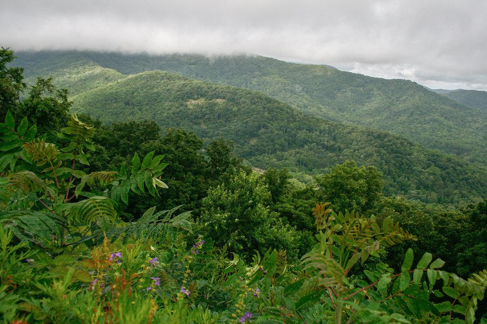 Blue-Ridge-Mountain-JPEG_web 6.jpg