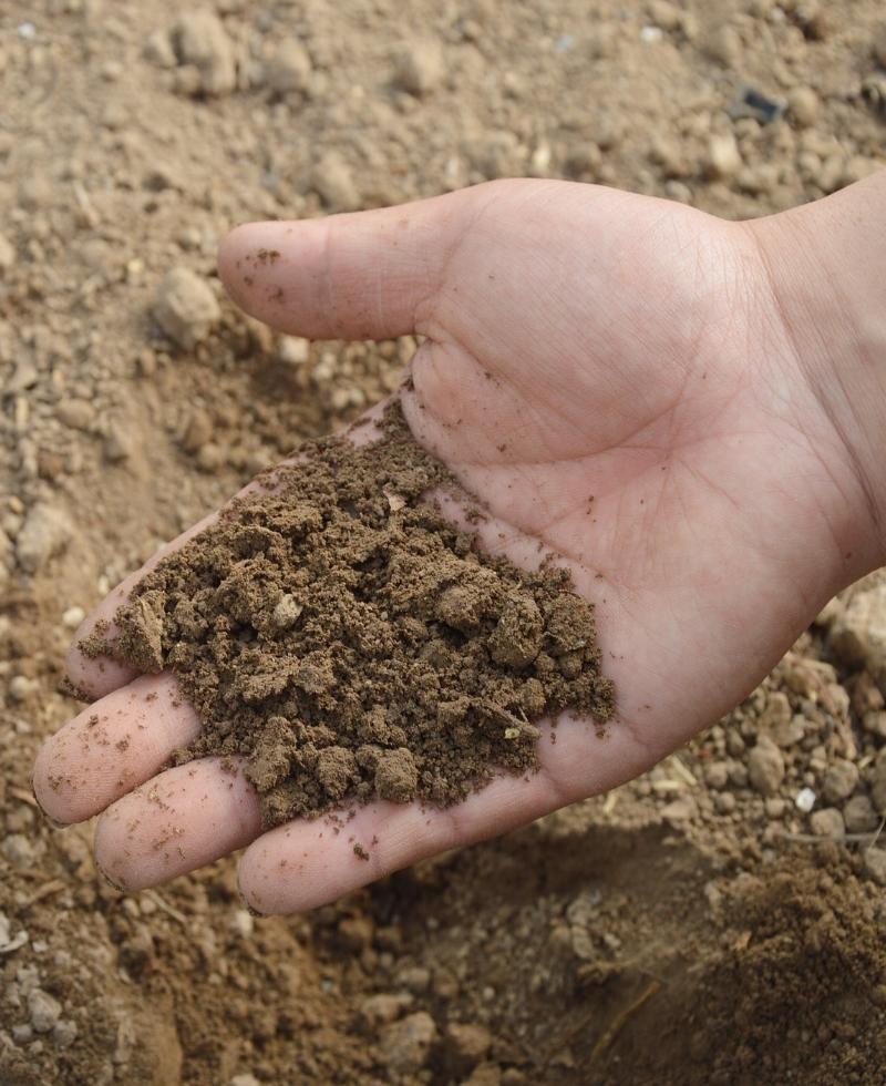soil-766281_1920.jpg