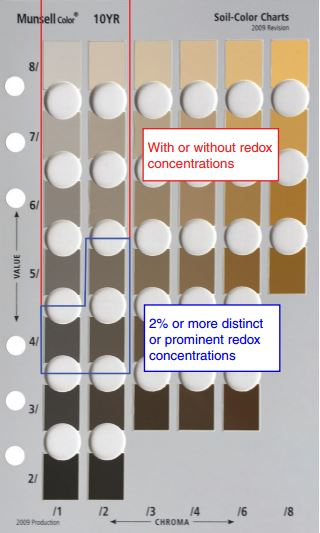 Depleted matrix hydric soil indicator (USDA-NRCS, 2016).