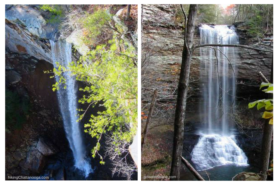 State Nature Preserves are managed by the Tennessee Department of Environment and Conservation. Many rare species of plants and animals can be observed at these sites. Falling Water Falls (right) and Piney Falls (left) are two of 85 managed areas.