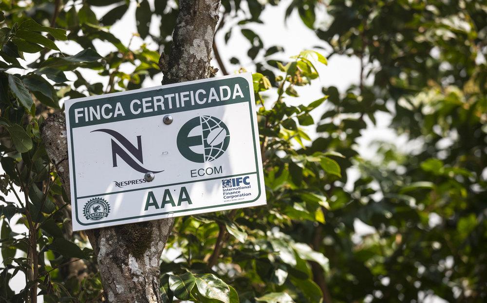 Nespresso_Costa_Rica_.jpg