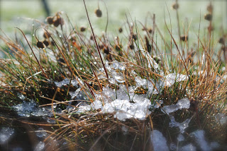 april-danann-snow-melting.jpg