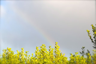 April-Danann-Rainbow-2012.jpg
