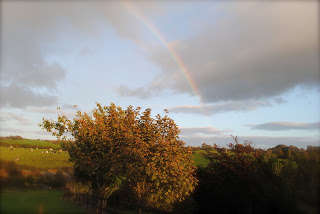 April-Danann-Rainbow-over-the-tree-Leap.jpg