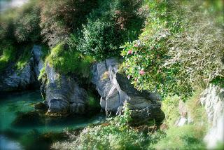 april-danann-Rocks-in-Harbour-Glandore.jpg