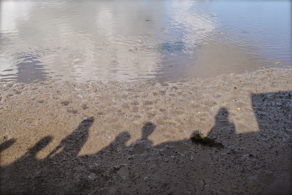 april-danann-Shadows-on-water.jpg