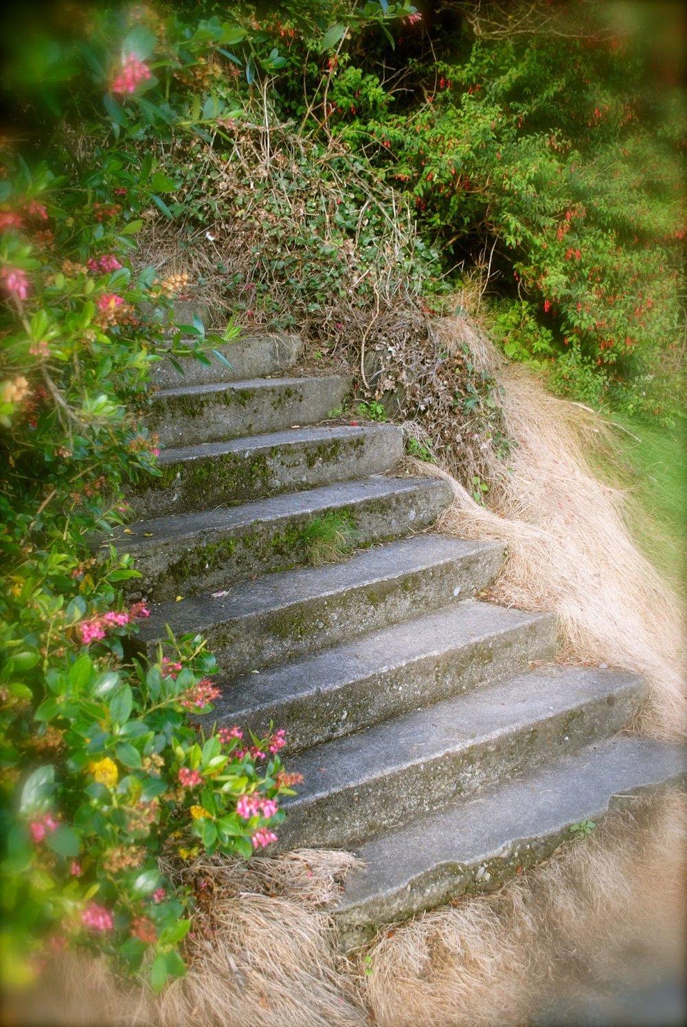 april-danan-A little-climb.jpg