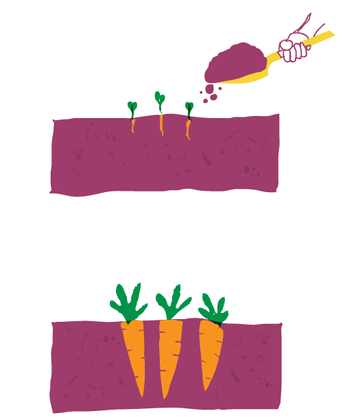 Compost Illustration