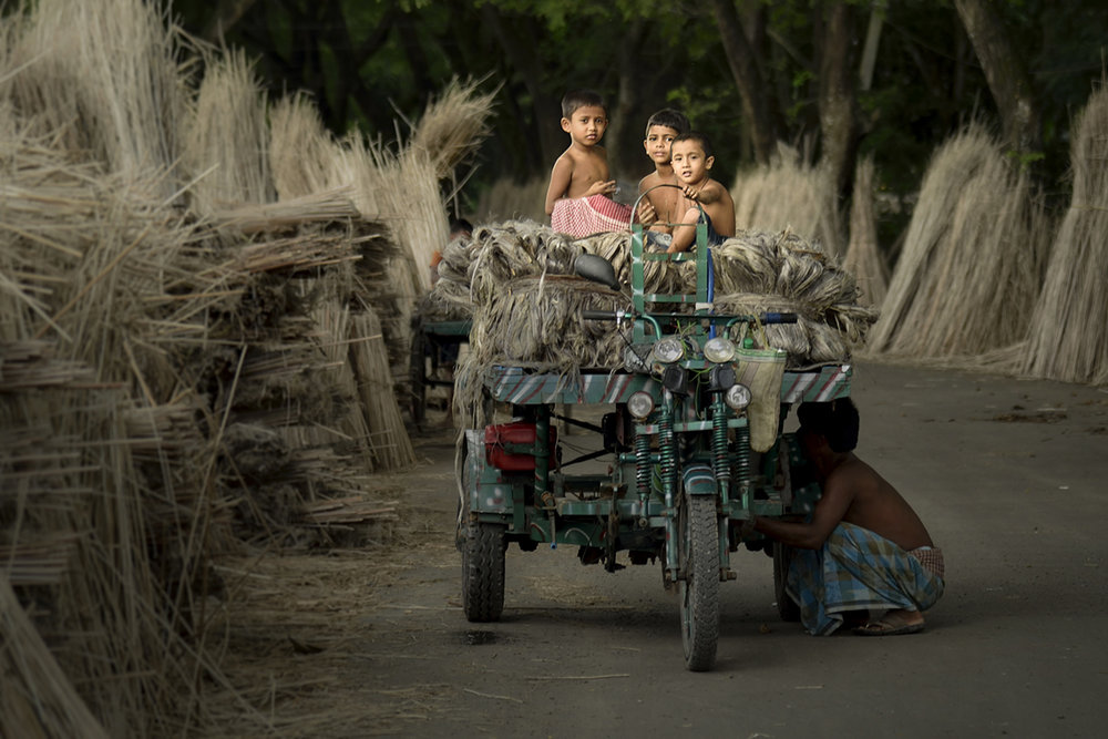 Photographer: Debdatta Chakraborty   Country: India  Title: The Golden Crop Collectors