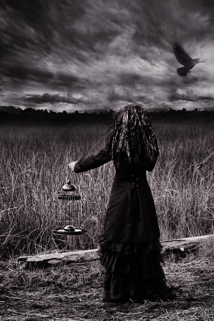 Photographer: Kimberly Krauk   Country:  USA  Title: Set Free