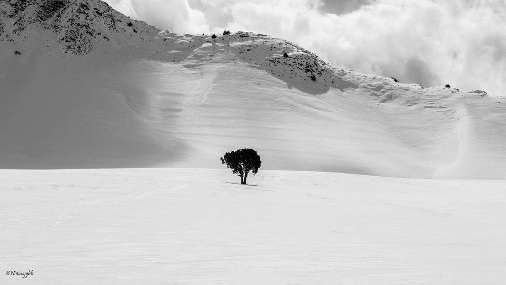 Photographer: Nima Yaghoobi   Country: Iran  Title: Untitled