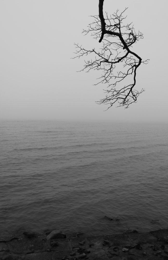 Photographer: Rahul Kumar Saha   Country: Hungary  Title: Silence