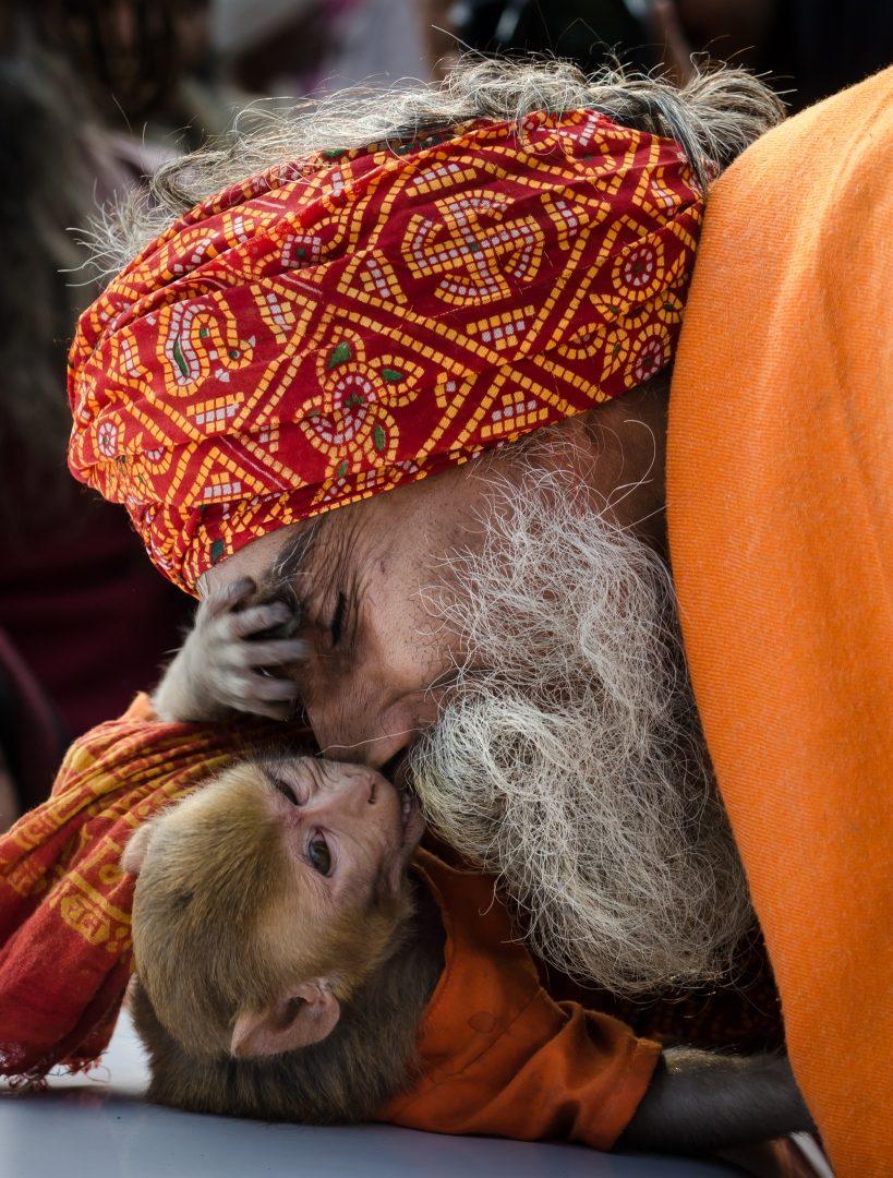Photographer:  JM Joy Deep   Country: India  Title:   Companion