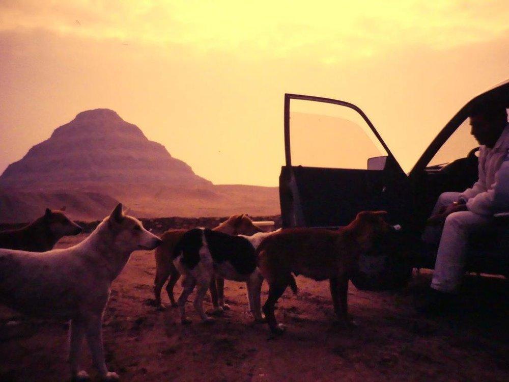 My Trip to Egypt by Lothar Siebel