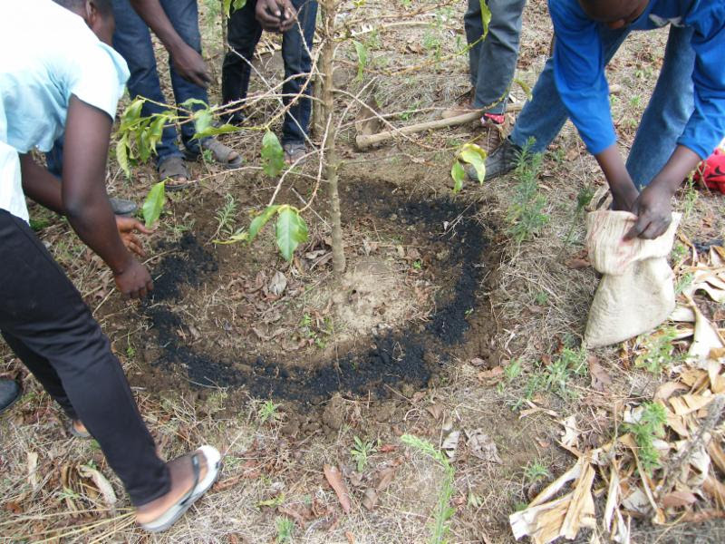 A biochar application as part of the Black Earth Project in Tanzania. All images courtesy of Radio Lifeline.