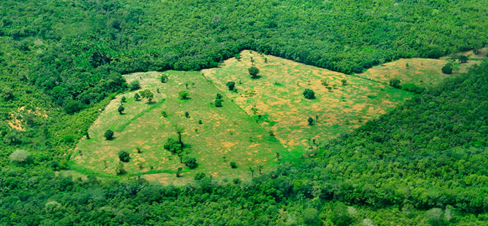 Aerial view of the Amazon rainforest, photo by Neil Palmer (Flickr:  CIAT )