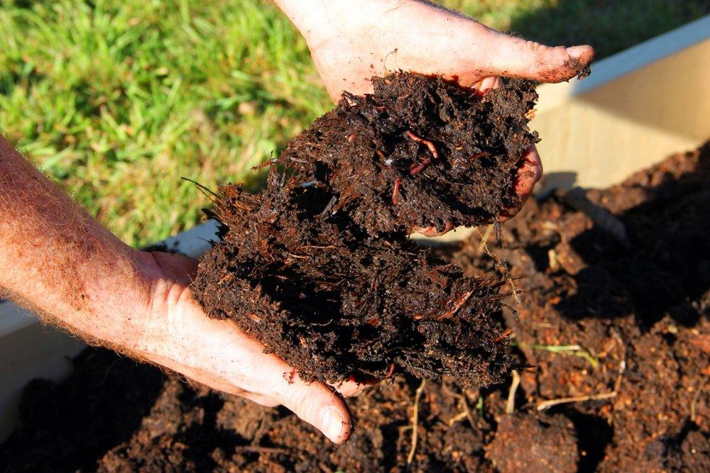 170911-organic-farming-soil.jpg