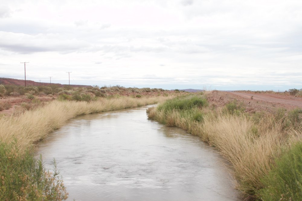 It took a great deal of energy to create these systems, but now the simple re-routing of water amplifies the ecosystem. Wetland ecologies emerge in what was once desert, and former moonscapes now produce fruit.