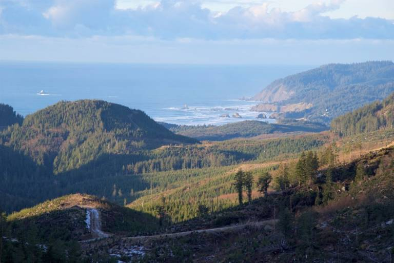 Onion Peak is a 5,055 acre parcel managed by Ecotrust Forest Management on the Oregon Coast.
