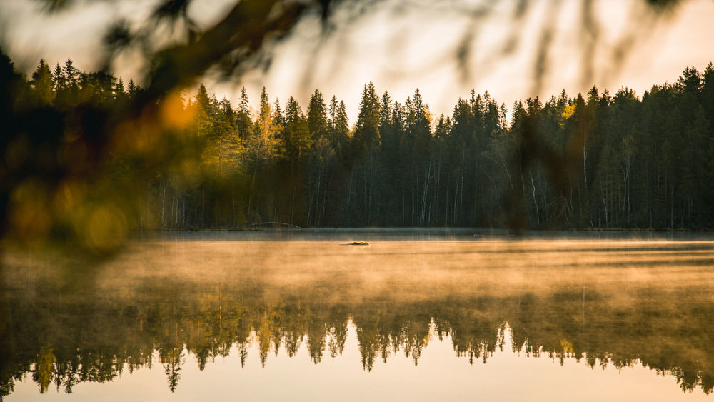 21-sunrise-misty-morning-lake-finland-camping-anna-elina-lahti-photographer.jpg
