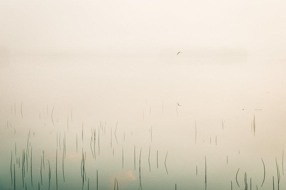 39-sunrise-mist-fog-camping-lake-finland-anna-elina-lahti-photographer.jpg